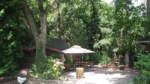 Park mit altem Baumbestand
